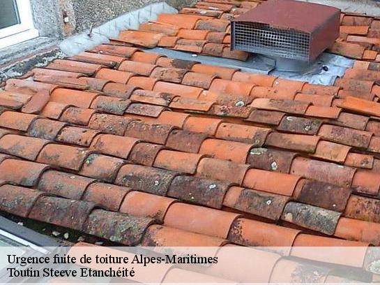 r paration fuite de toiture 06 alpes maritimes t l. Black Bedroom Furniture Sets. Home Design Ideas
